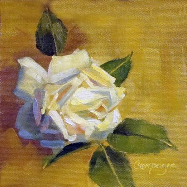 """""""White Rose"""" original fine art by Roseanne Campagna"""