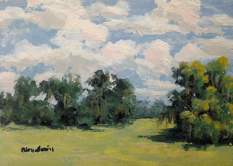 """""""Field"""" original fine art by Linda Blondheim"""