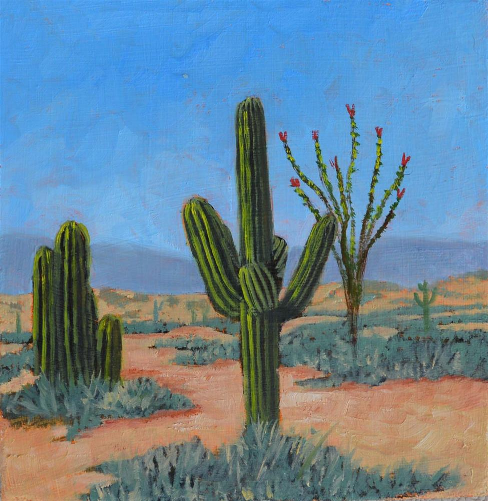 """Saguaro Afternoon"" original fine art by Robert Frankis"