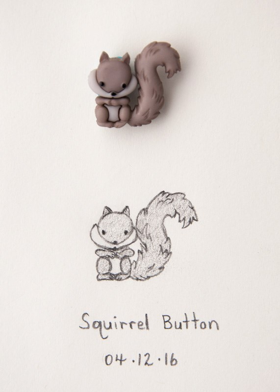 """Daily Sketch: Squirrel Button"" original fine art by Debbie Lamey-Macdonald"