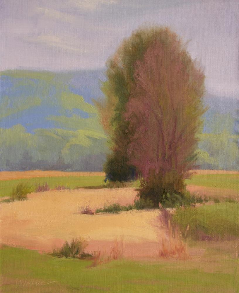 """#112 field trees in spring"" original fine art by Nancy Wallace"