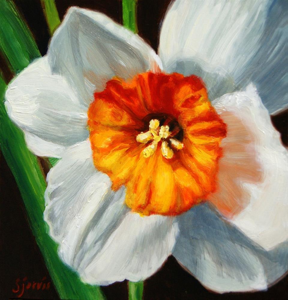 """Daffodil"" original fine art by Susan N Jarvis"
