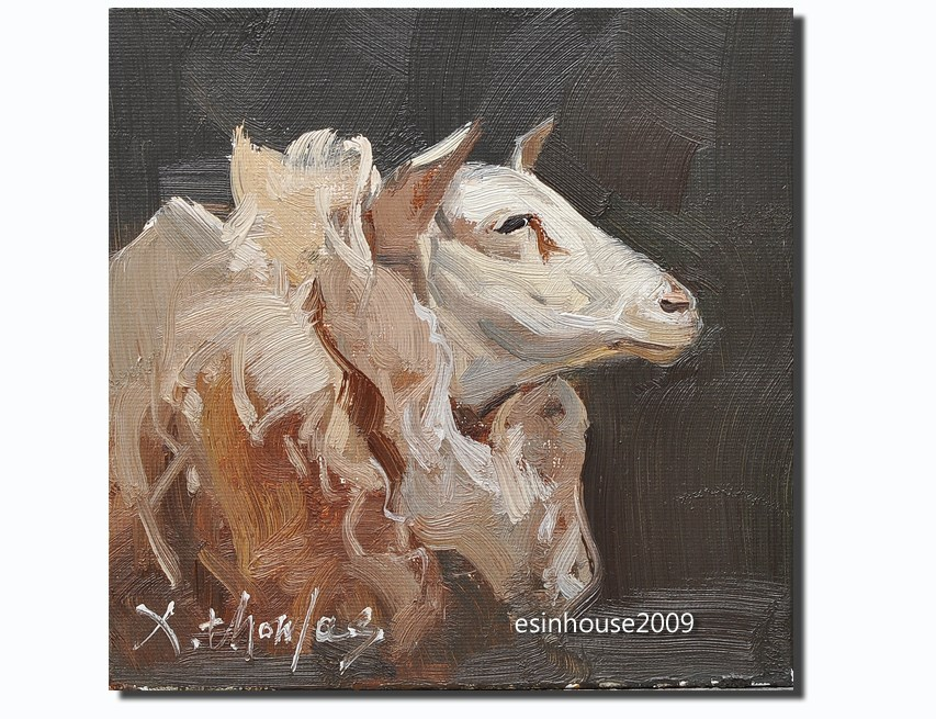 """sheep"" original fine art by Thomas Xie"