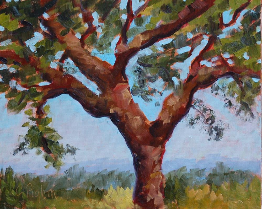 """Tree with a View"" original fine art by Carol Pighin"