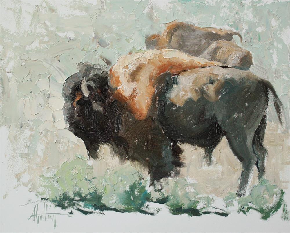 """Buffalo Study #15"" original fine art by Abigail Gutting"