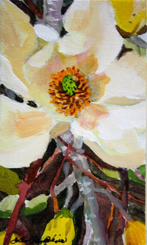 """""""Creamy Magnolia"""" original fine art by JoAnne Perez Robinson"""