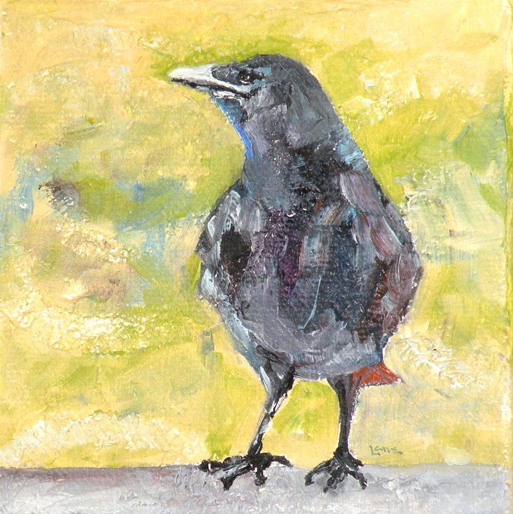 """CROW ATTITUDE ORIGINAL 4X4 OIL MINI ON GALLERY WRAP CANVAS © SAUNDRA LANE GALLOWAY"" original fine art by Saundra Lane Galloway"