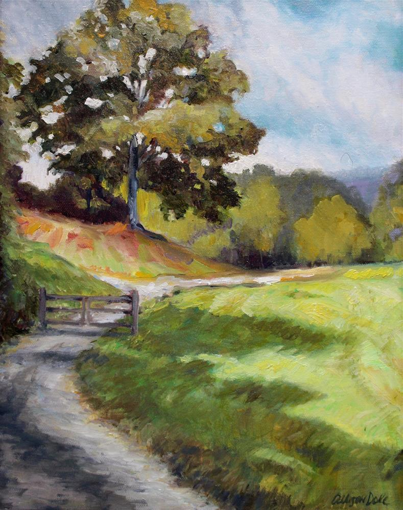 """""""Tunnel Hill Battlefield, Georgia  (Framed)"""" original fine art by Allison Doke"""