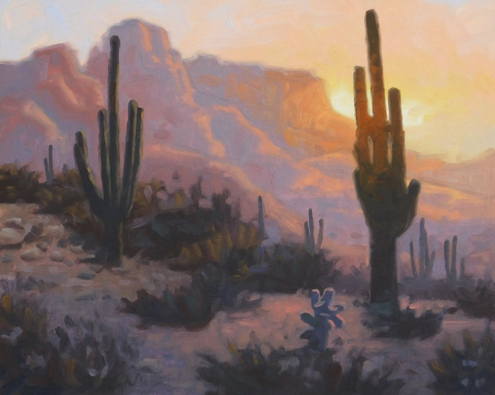 """Last Light on Saguaro"" original fine art by Les Dorscheid"