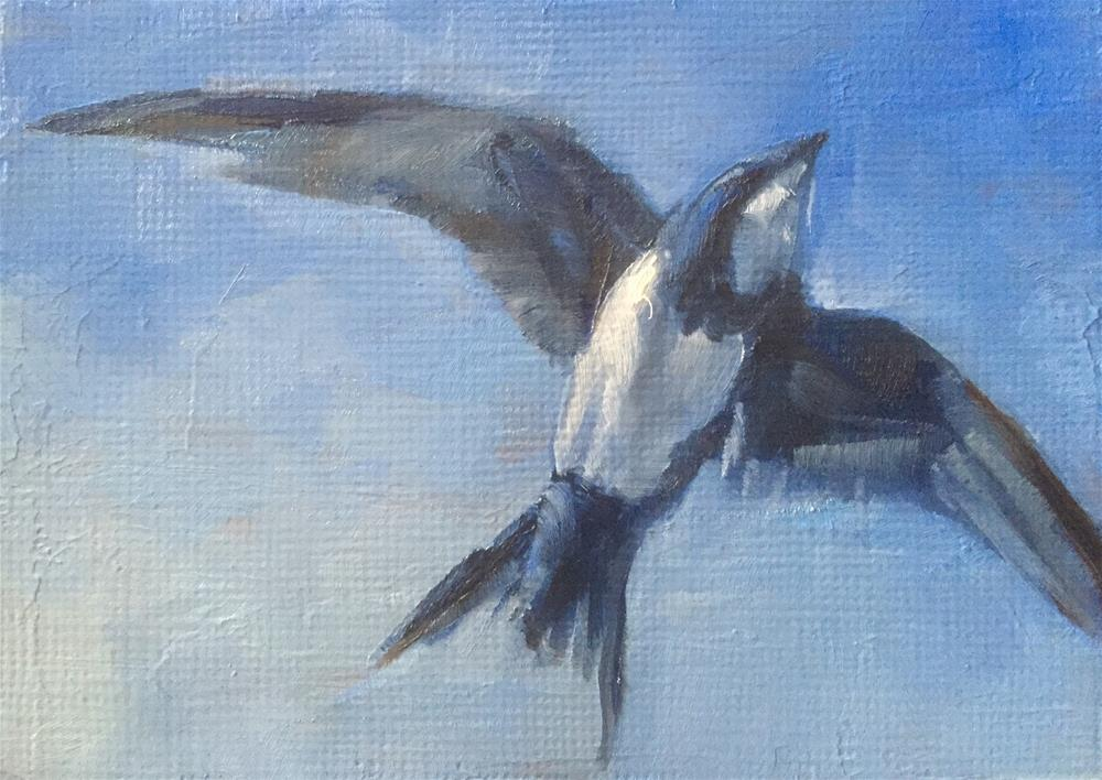 """Alpine Swift"" original fine art by Gary Bruton"