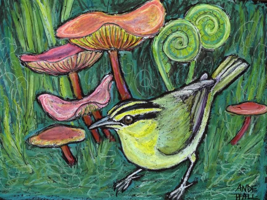 """Worm Eating Warbler"" original fine art by Ande Hall"