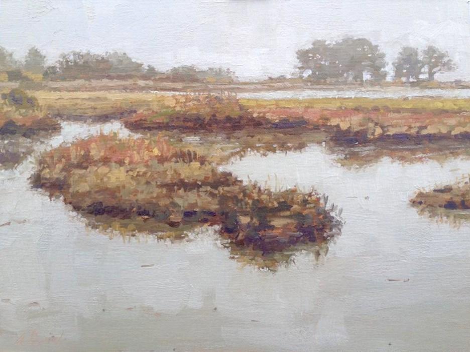 """Salt Flats of Arcata Bay"" original fine art by Andrew Daniel"