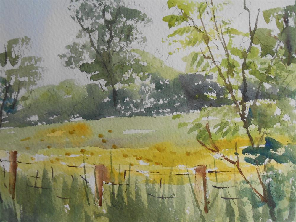 """Buttercup field"" original fine art by Graham Findlay"