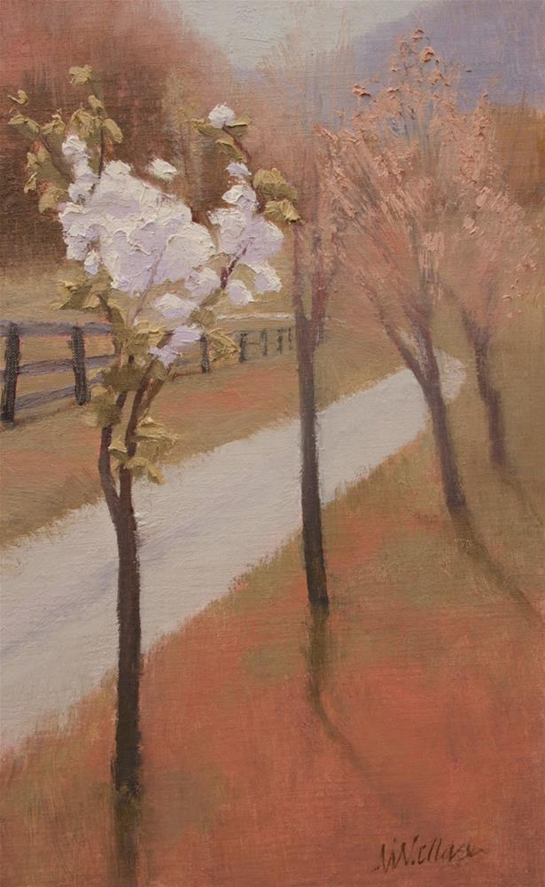 """#107 Bradford pear popcorn"" original fine art by Nancy Wallace"
