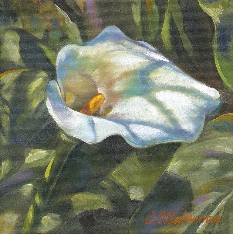 """Calla Shadows"" original fine art by Connie McLennan"