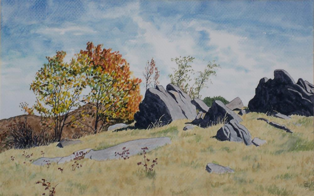 """Rocks near Rocky Knob"" original fine art by Greg Arens"