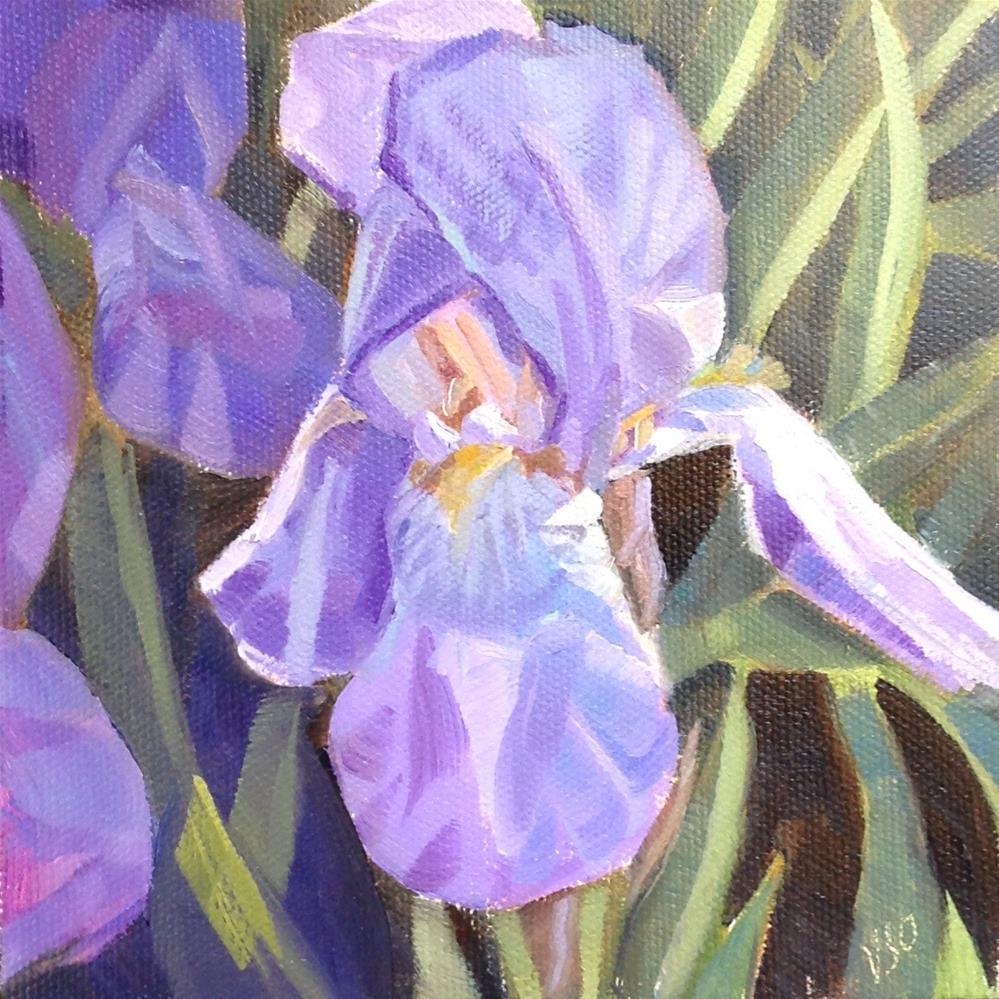 """Ethereal Blue Iris"" original fine art by Valerie Orlemann"