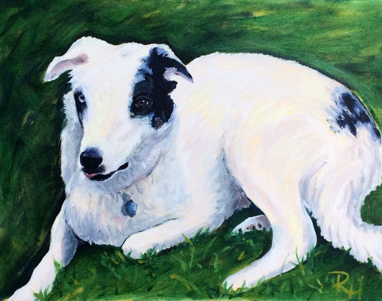 """Cooper"" original fine art by Rachel  Holland"