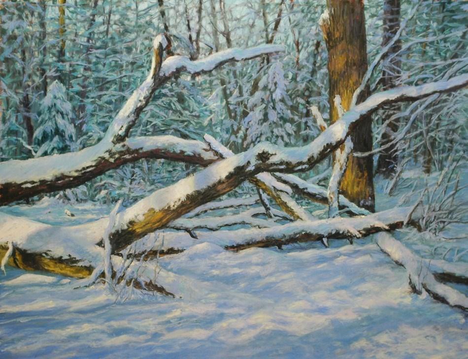 """Snow Covered  Windfall"" original fine art by Susan Klabak"