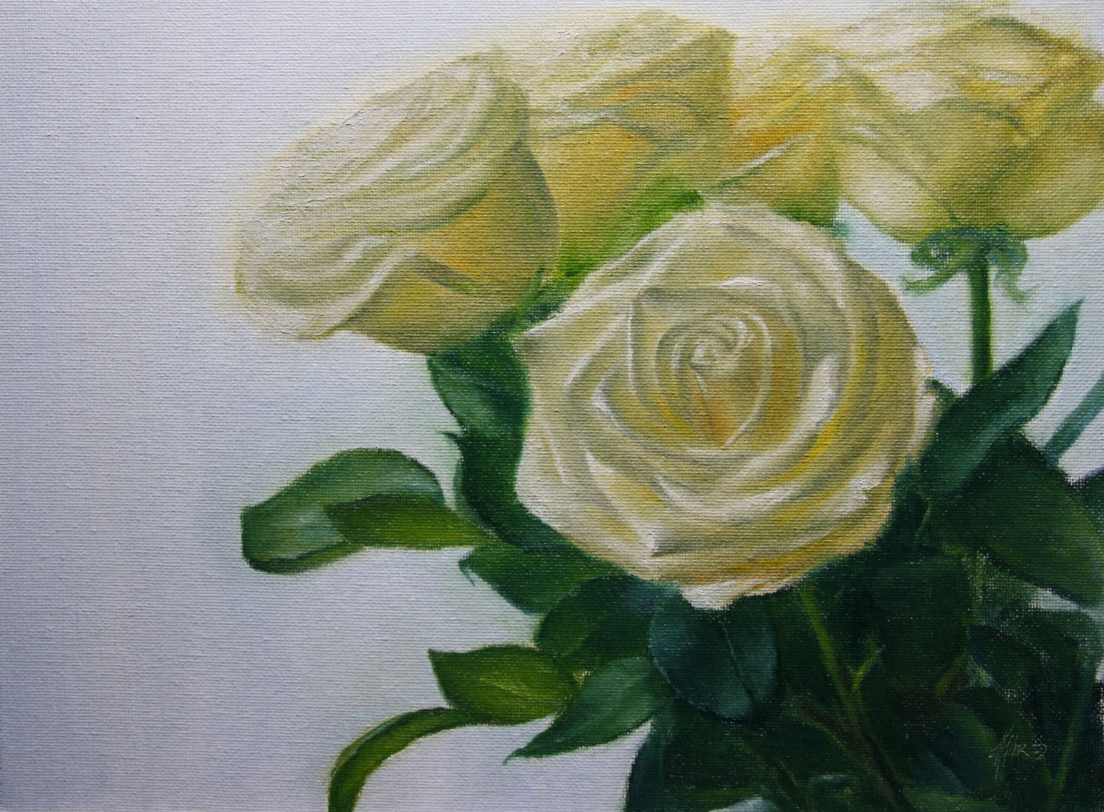 """Rosas Bianco"" original fine art by Jonathan Aller"