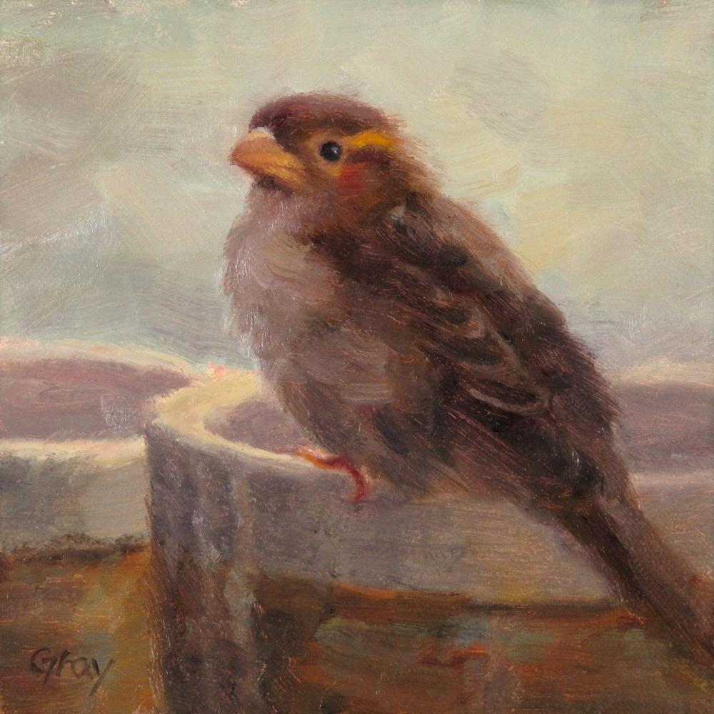 """""""Tobi the Sparrow No.3"""" original fine art by Naomi Gray"""
