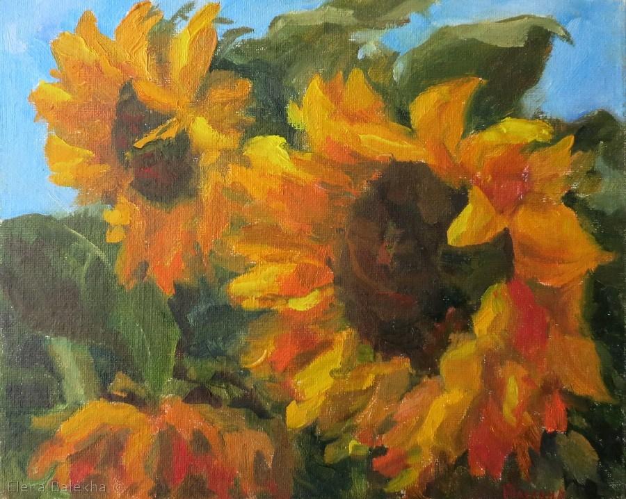 """Sunflowers3"" original fine art by Elena Balekha"