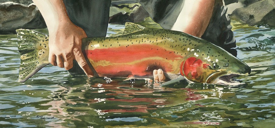 """Colors of the River - Steelhead"" original fine art by Andy Sewell"