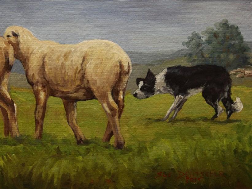 """""""Border Collie"""" original fine art by Sue Deutscher"""