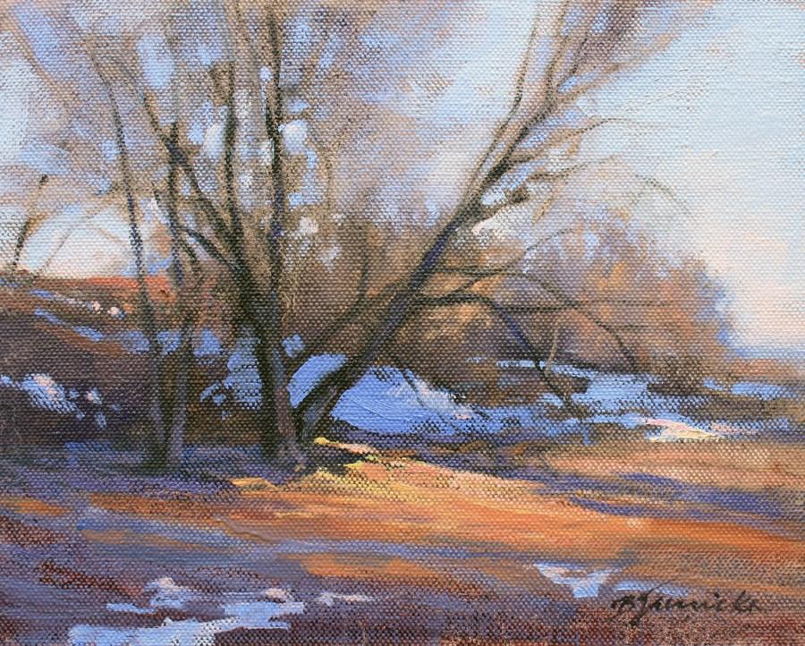 """January Shadows"" original fine art by Barbara Jaenicke"