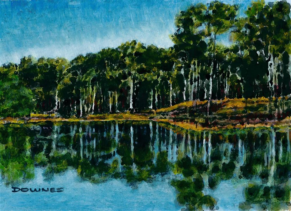 """005 REFLECTIONS"" original fine art by Trevor Downes"
