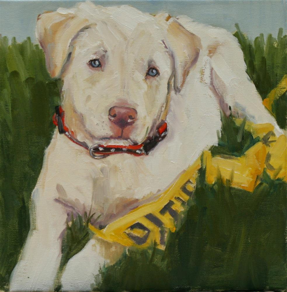 """joe"" original fine art by Carol Carmichael"