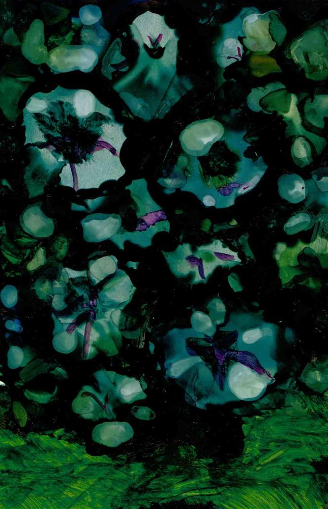 """Shady Moonflowers"" original fine art by Kelly Alge"