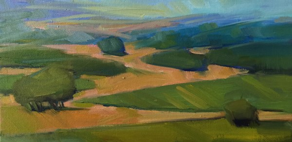 """Durant Vineyards Vista"" original fine art by Patti McNutt"