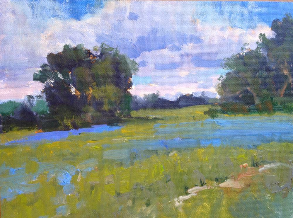 """Near Gonzales "" original fine art by David Forks"