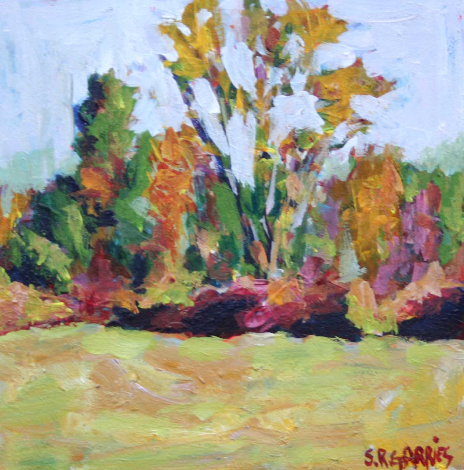 """fall trees"" original fine art by Shelley Garries"