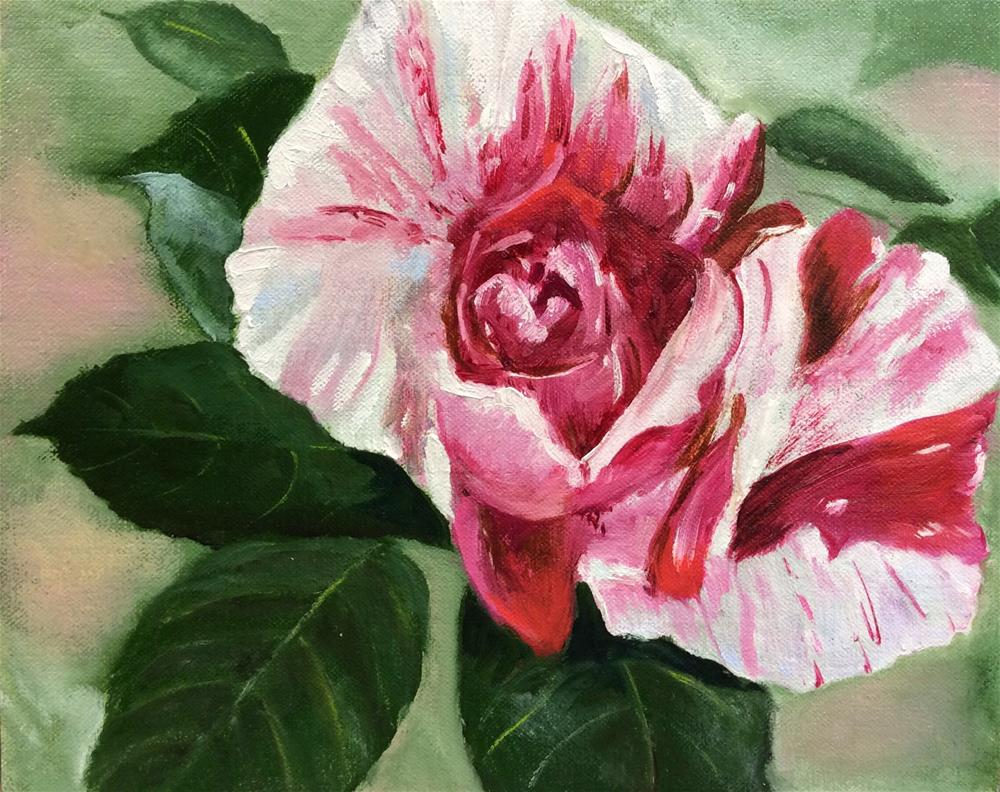 """Candy Cane Rose"" original fine art by Charlotte Lough"