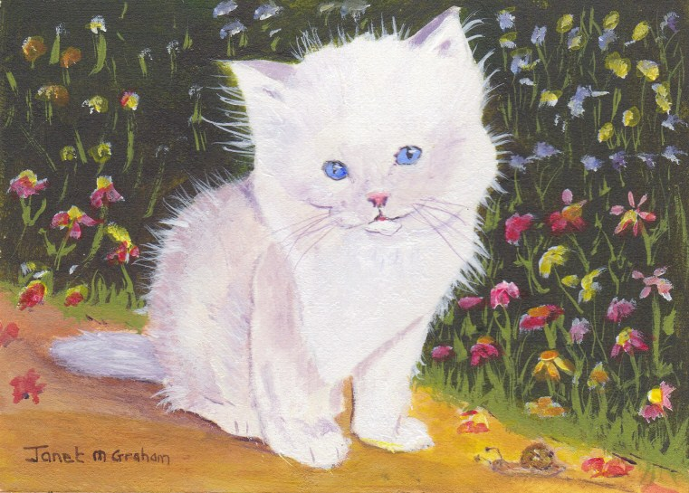 """Kitten ACEO"" original fine art by Janet Graham"
