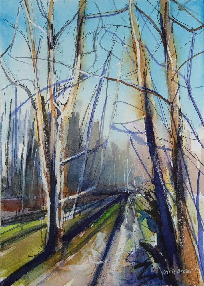 """Trees and Shadows"" original fine art by Chris  Breier"
