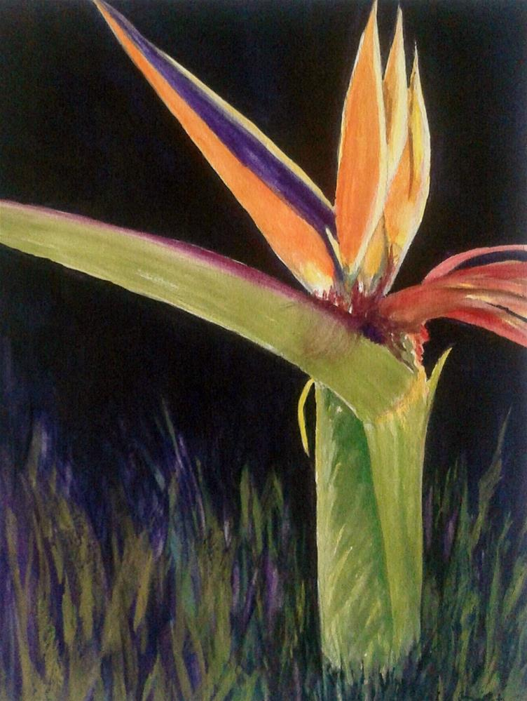 """Vivid"" original fine art by Cathy Dykstra"