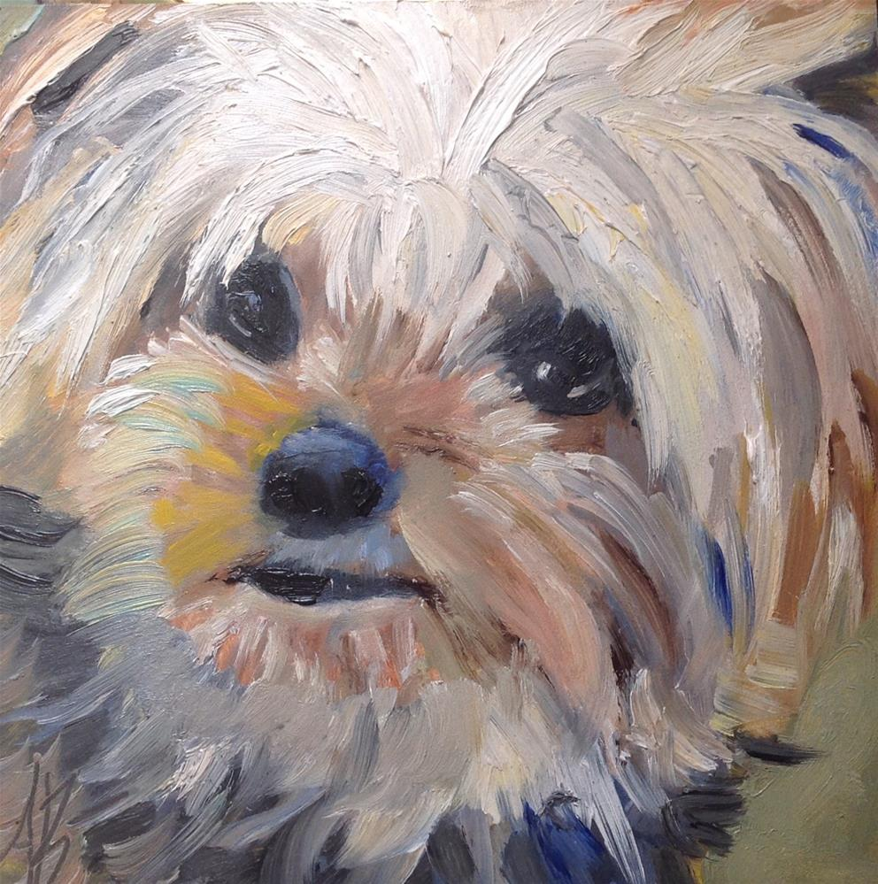 """Yorkie looking at YOU!"" original fine art by Annette Balesteri"