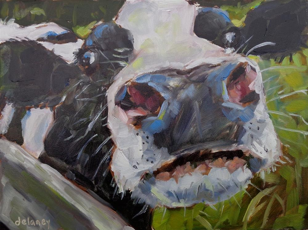 """Cow 147 - DANGEROUSLY BEAUTIFUL"" original fine art by Jean Delaney"