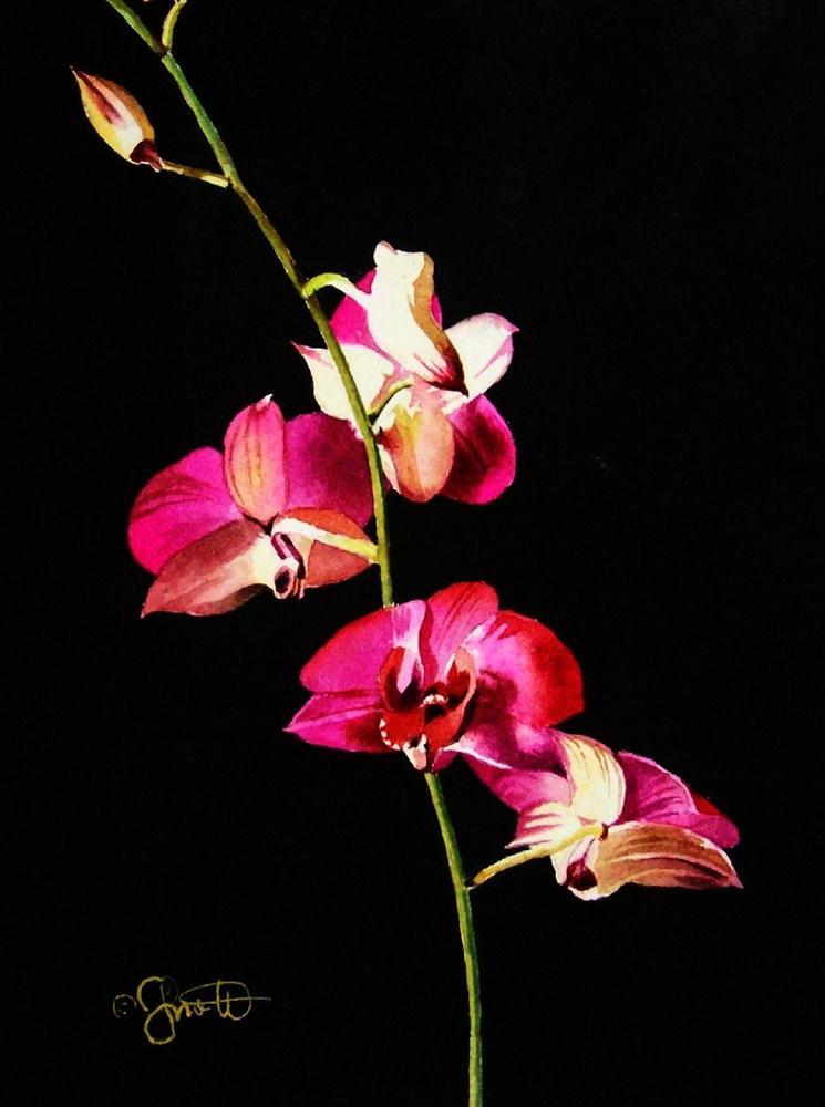 """Pink Orchid Stem"" original fine art by Jacqueline Gnott, TWSA, WHS"