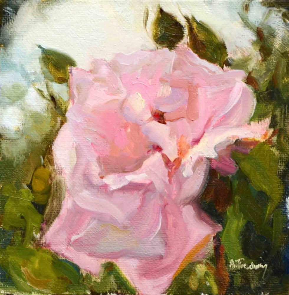 """One Light Pink Rose"" original fine art by alicia tredway"