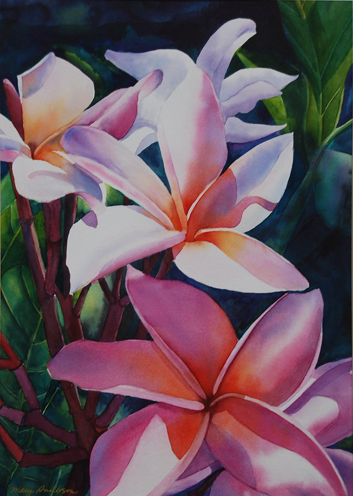 """Pink Plumeria"" original fine art by Mary Anderson"