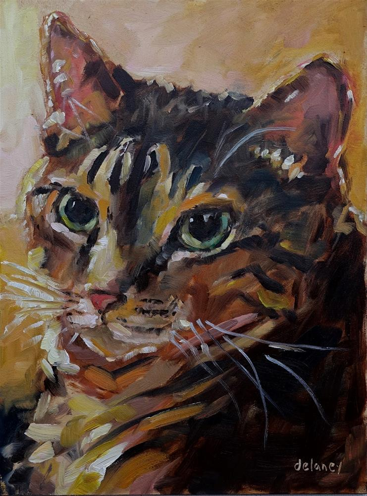 """LOVELY CAT"" original fine art by Jean Delaney"