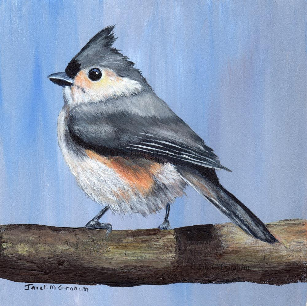 """Tufted Titmouse No 5"" original fine art by Janet Graham"