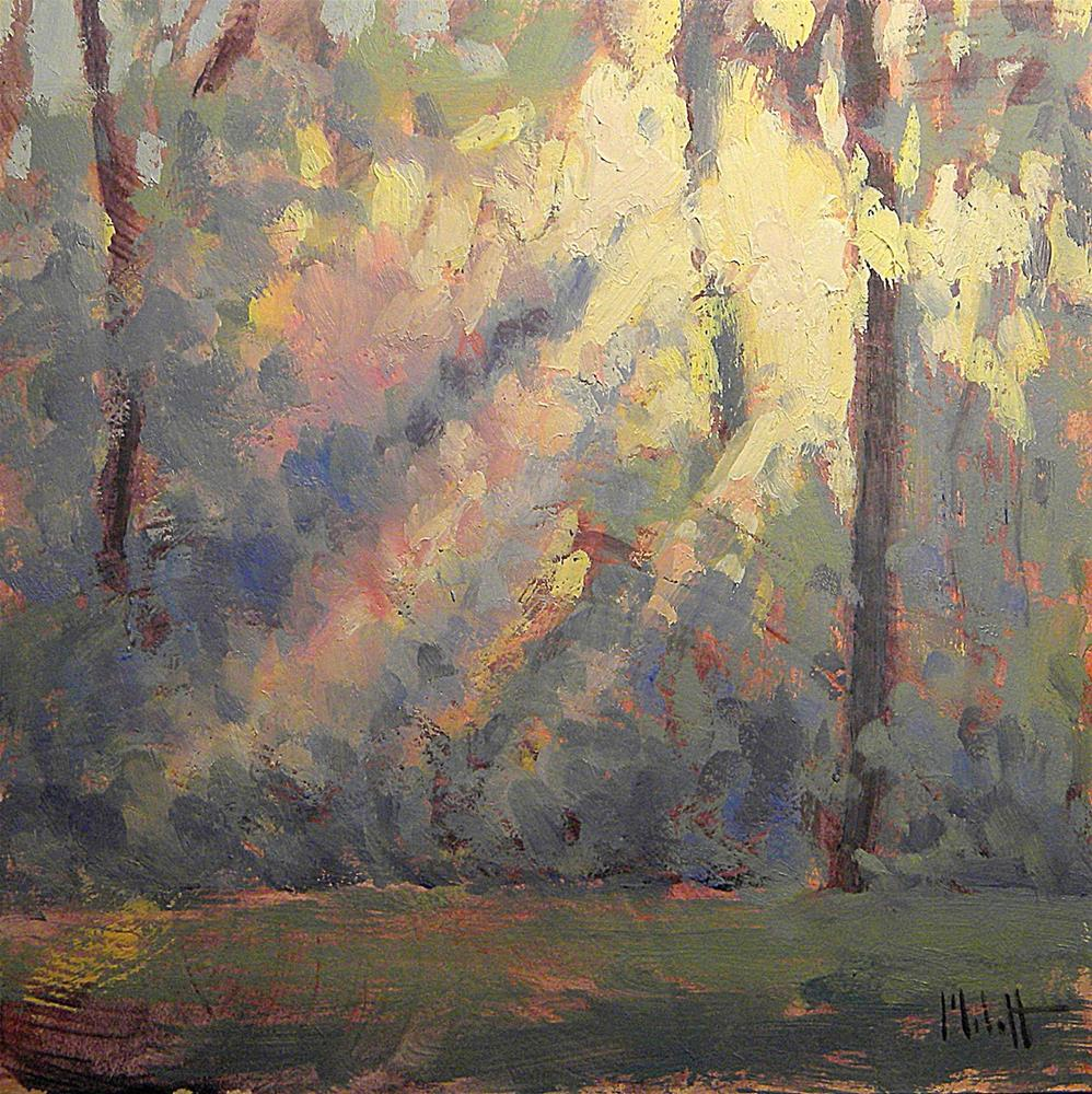 """Sunrise through the Woods Daily Oil Painting Heidi Malott"" original fine art by Heidi Malott"