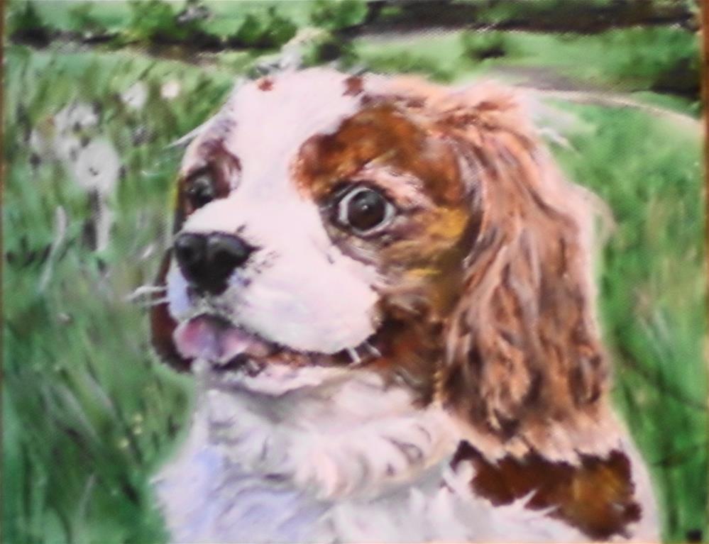 """""""Portrait of a dog"""" original fine art by tara stephanos"""