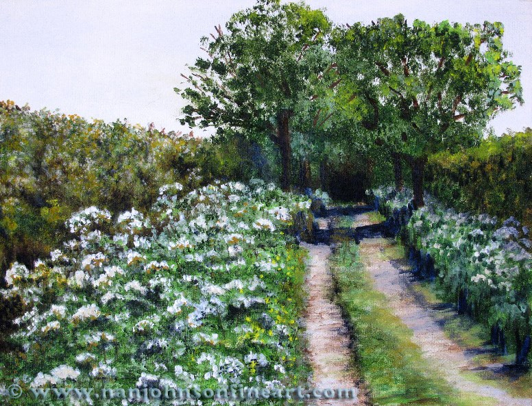 """Hedge Lane"" original fine art by Nan Johnson"