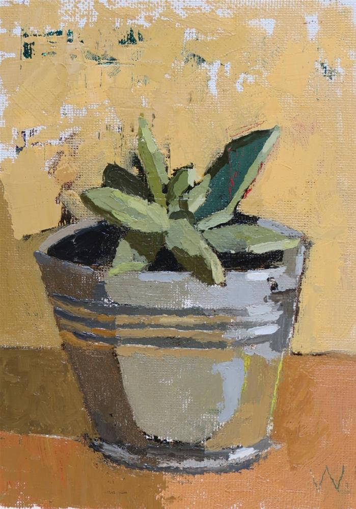 """Succulent"" original fine art by Joan Wiberg"